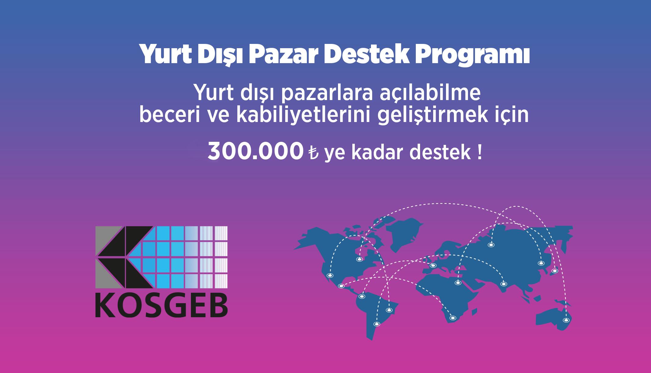 Yurt Dışı Pazar Destek Programı